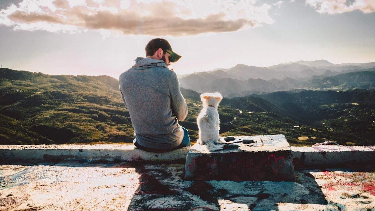 Что сказал бы Фрейд: почему большие мужчины любят маленьких собачек
