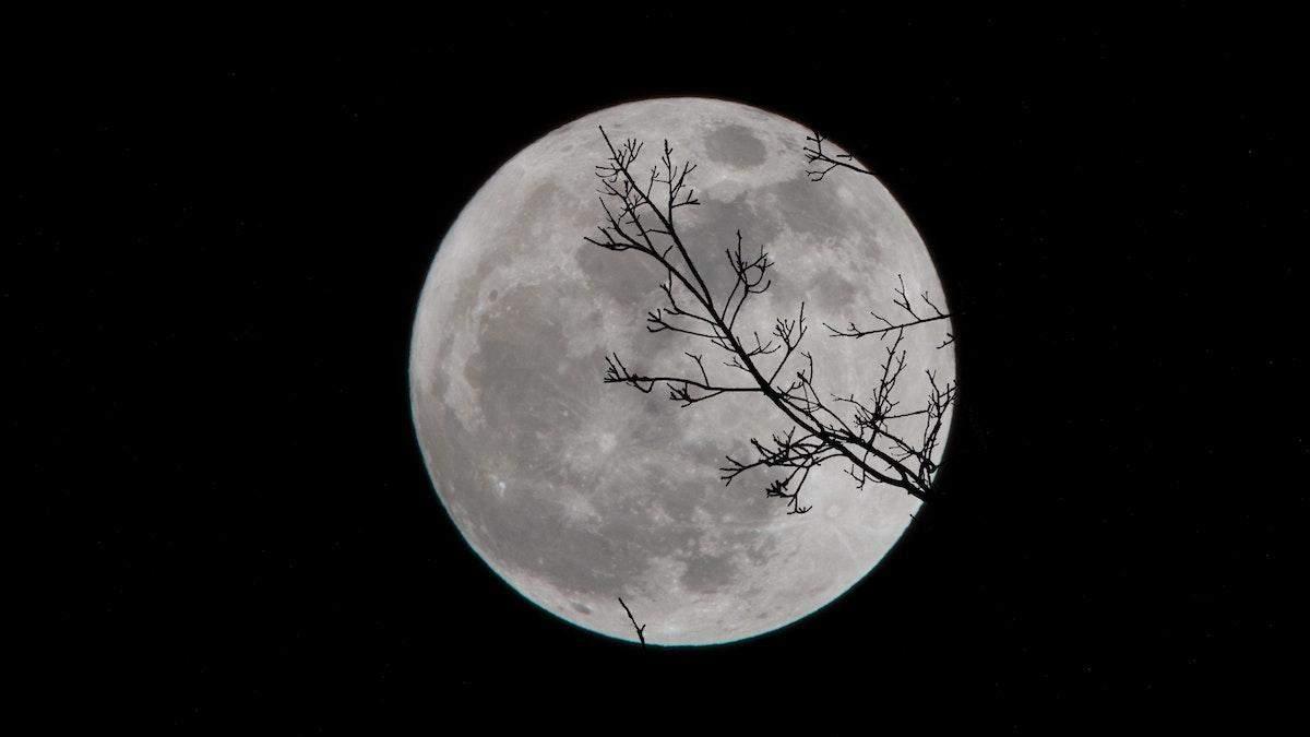 Астероїди били Місяць навіть дужче, ніж здається - Men